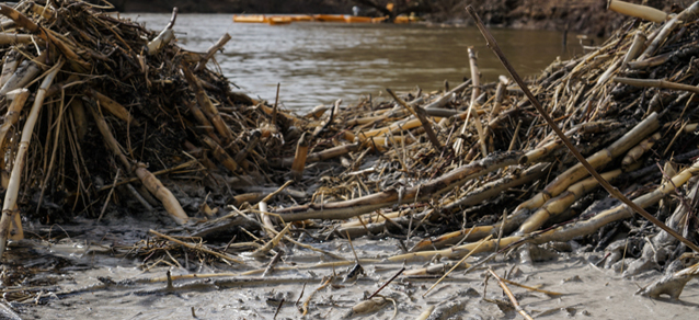 Photo of coal ash on the Dan River. Courtesy of Waterkeeper Alliance