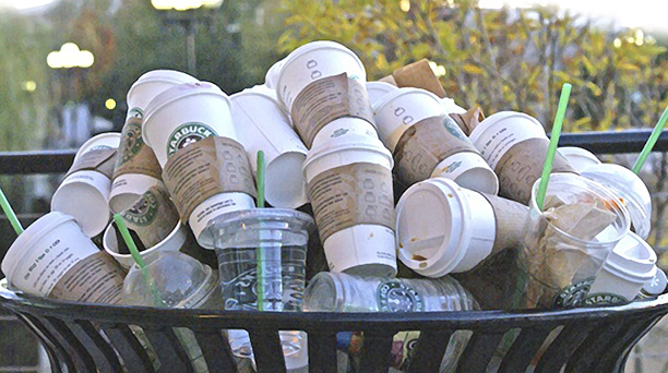 Cups in trash