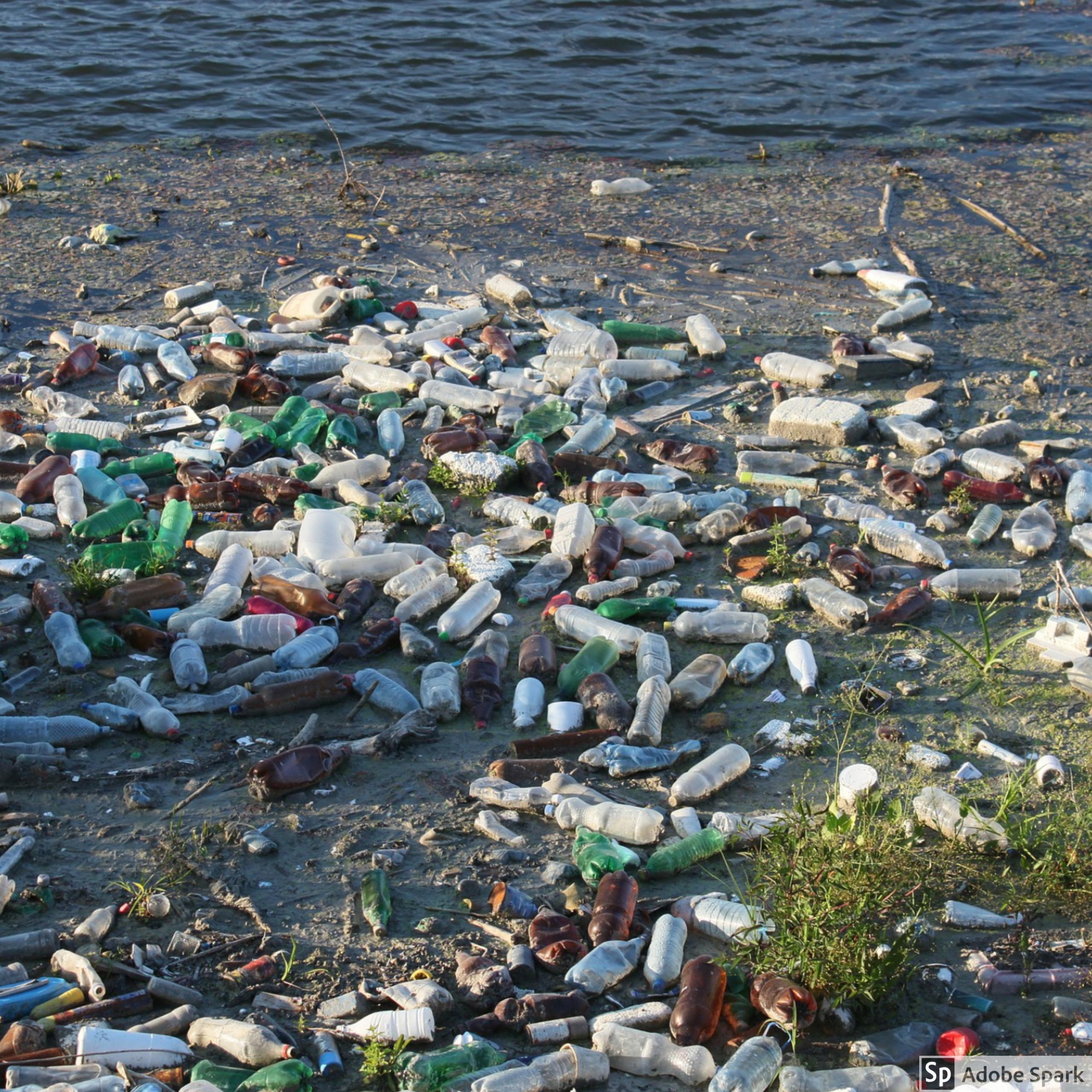 NJ_Plastic Waste_Newsletter Image from Emily
