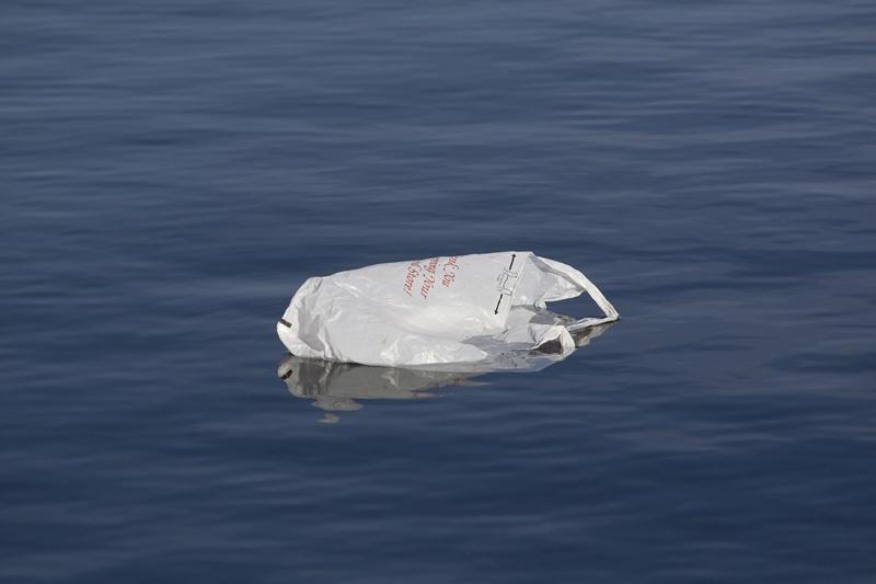 Paper-or-Plastic-000002481253_Large_Rhode Island.jpg