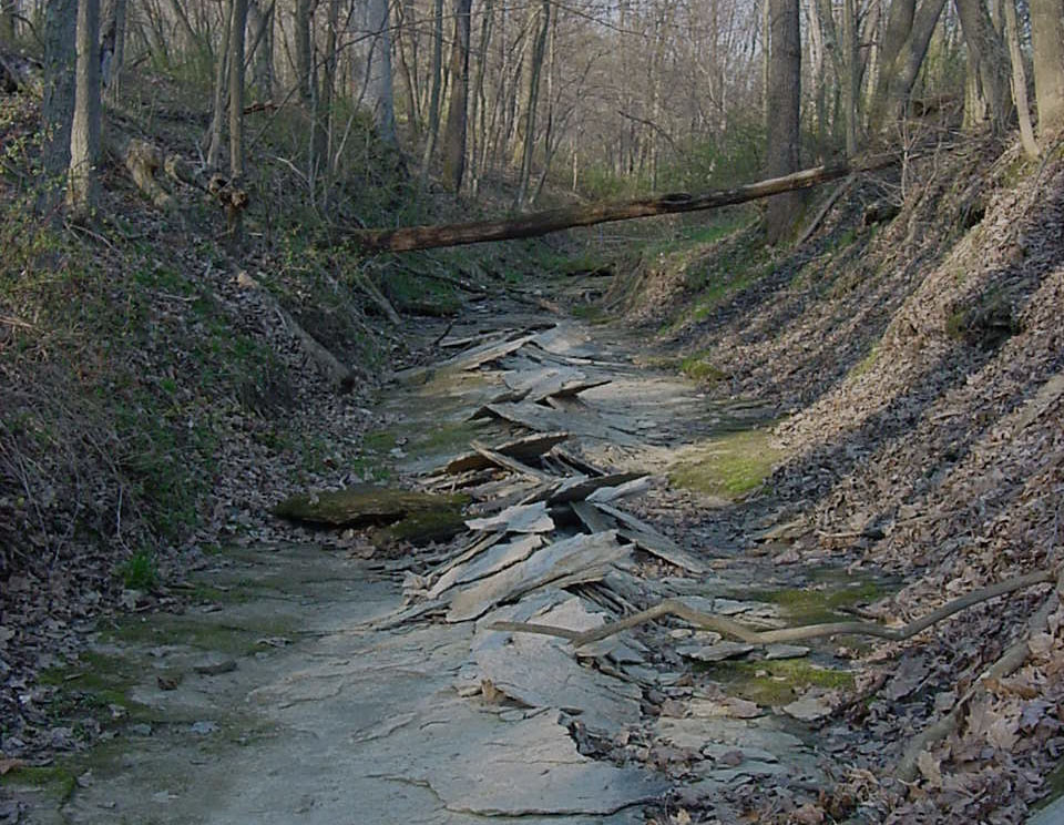 Cracked shale streambed photo: Mark Hersh from the Raymond Proffitt Foundation
