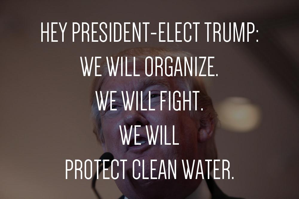 We will organize. Original photo: a Katz / Shutterstock
