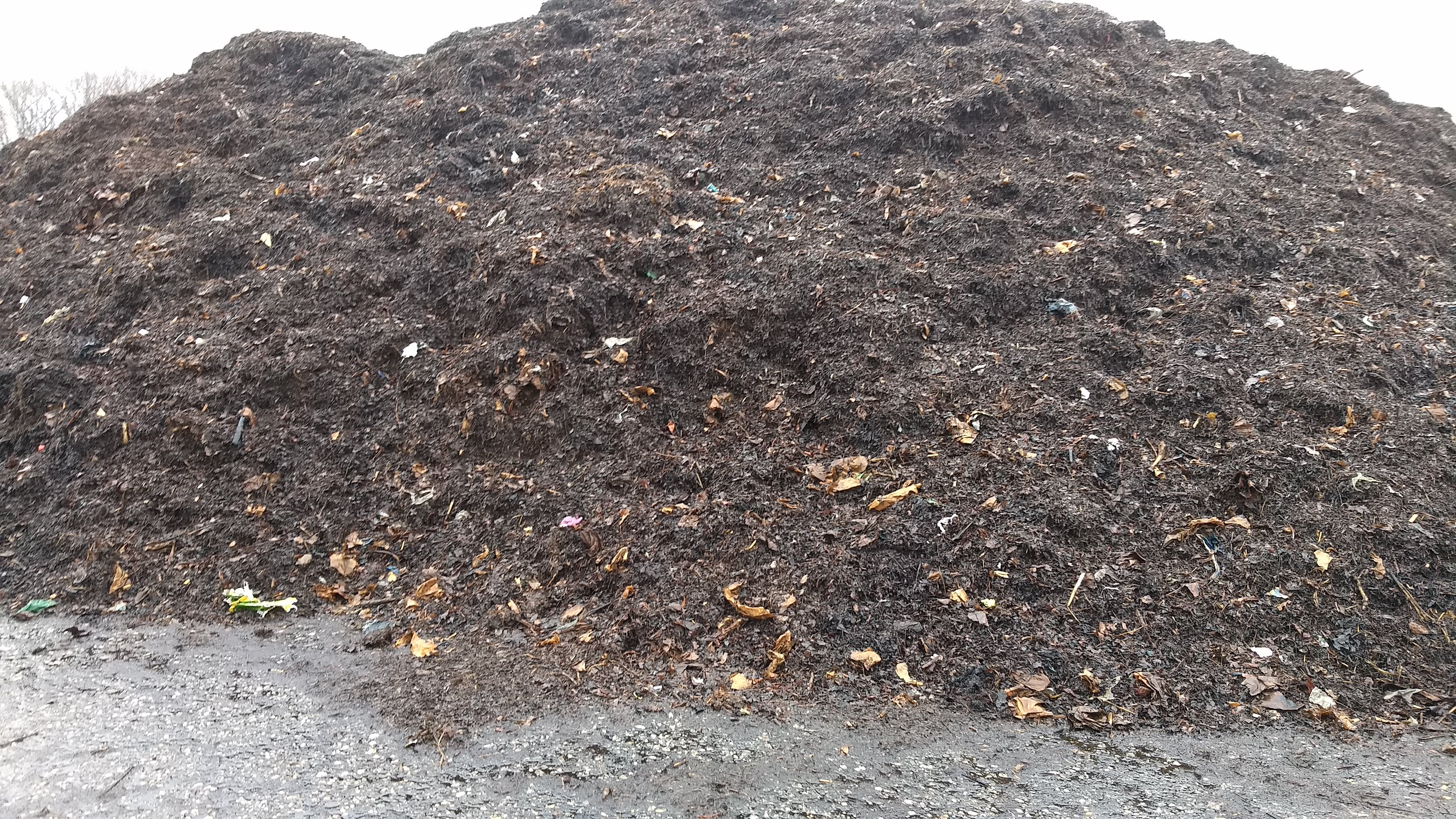 A compost pile at Prince George's County's compost facility.