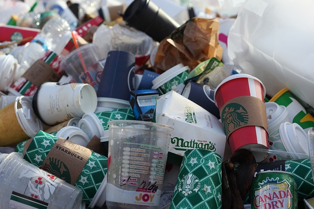 discarded coffee cups in trash