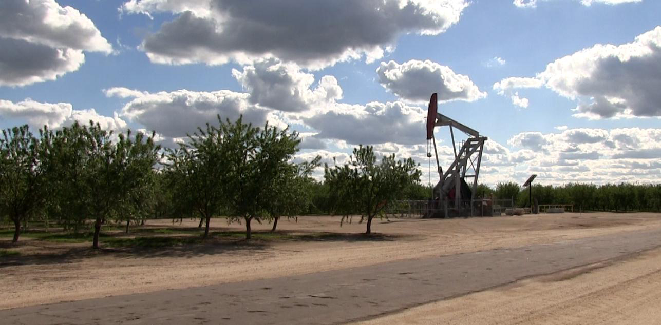 An oil well near an almond farm in Shafter CA