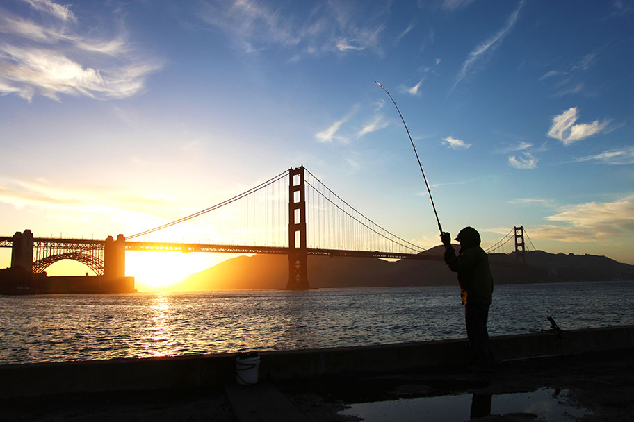 Subsistence fishing clean up san francisco bay for for Sf bay fishing report