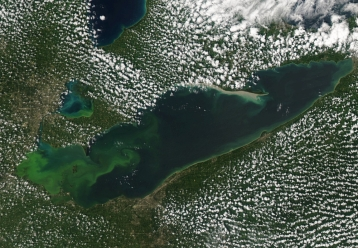 Lake Erie Algal Bloom - August 2015. Photo Credit: NOAA Great Lakes CoastWatch