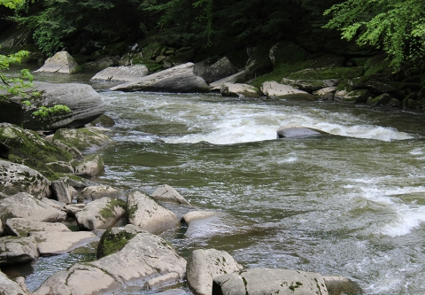 McConnell's Mills State Park in Pennsylvania