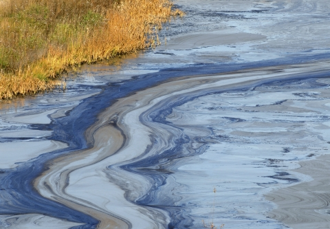 Oil slick on water