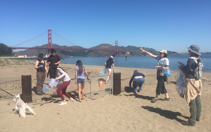 Some of our beach cleanup volunteers at work