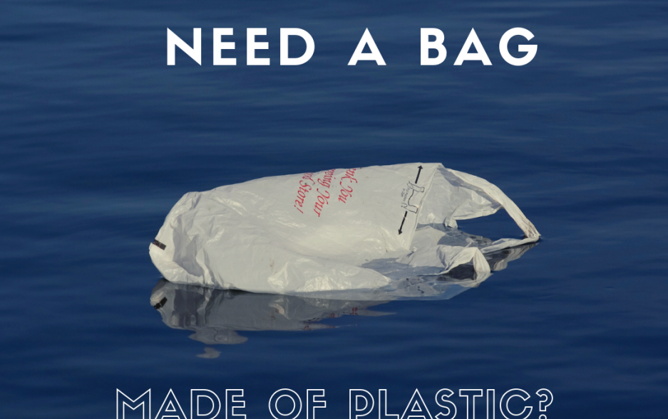 NJ_RethinkDisposable_plastic bag_do you need a bag_canva