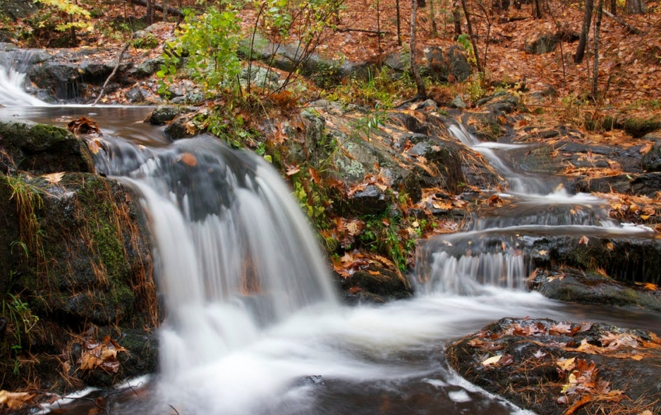 Small water fall, in a forest