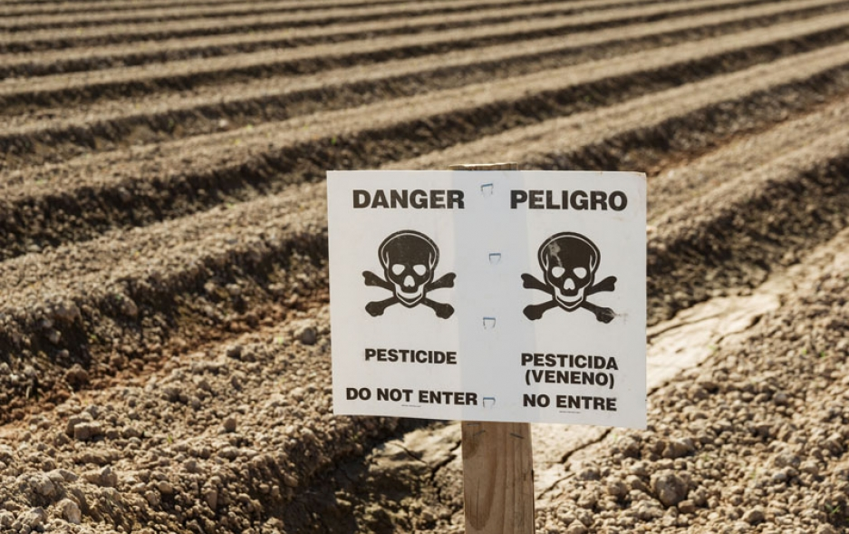 Farm field with a pesticide warning sign. Photo credit: Tom Grundy / Shutterstock