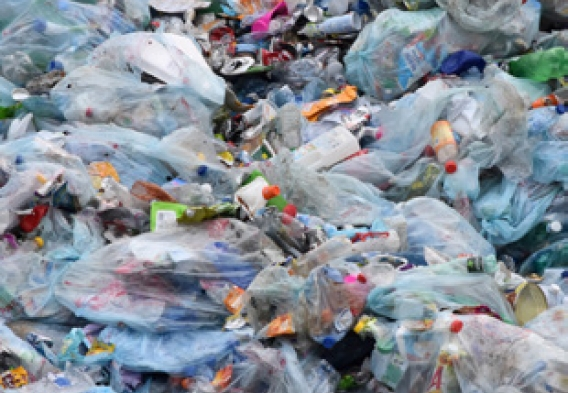 ReThink Disposable_NJ_PlasticBags_Image from NJ Summer newsletter 2018.jpg