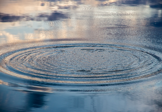 Ripples on the surface of the water. Credit: 2xWilfinger / Shutterstock
