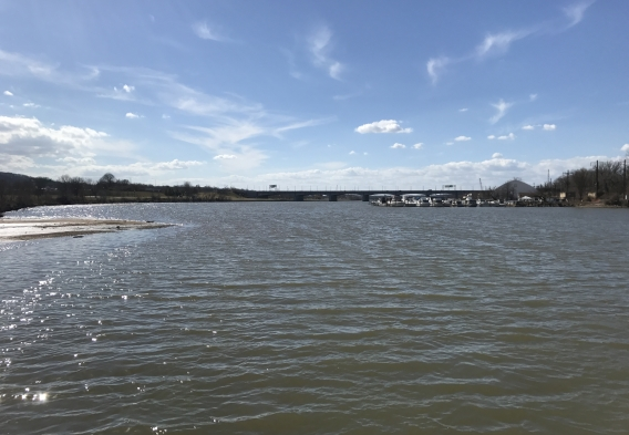 A view of the Anacostia River with Anacostia Park on the left and Seafarer's Yacht Club on the right