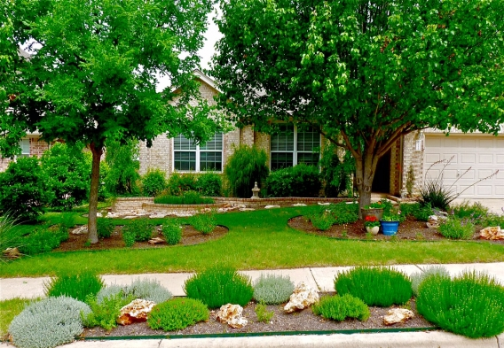 Xeriscape in Texas, photo: Bob Beyer